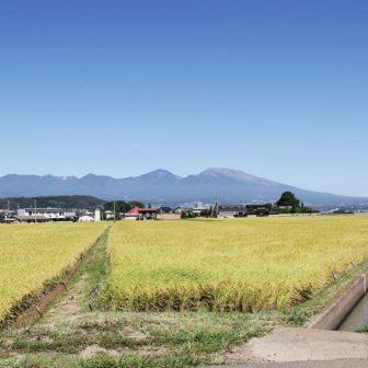 佐久市浅科地区のイメージ