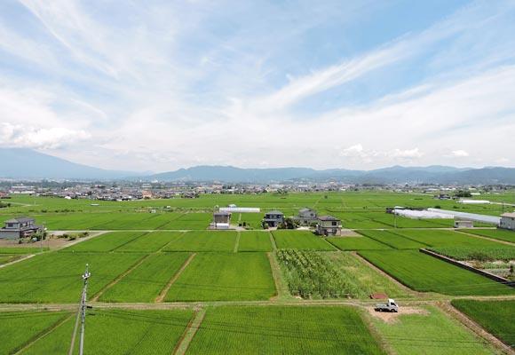 佐久市佐久地域の田畑の風景