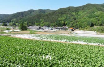 南相木村のイメージ