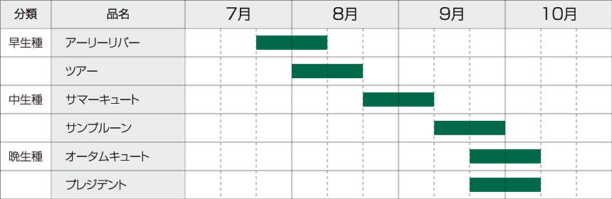 プルーンの収穫時期の図