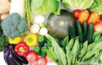 地域で収穫可能な野菜のイメージ