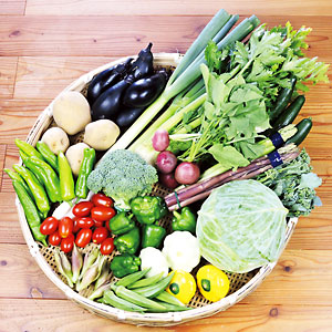 夏の野菜セットLサイズのイメージ